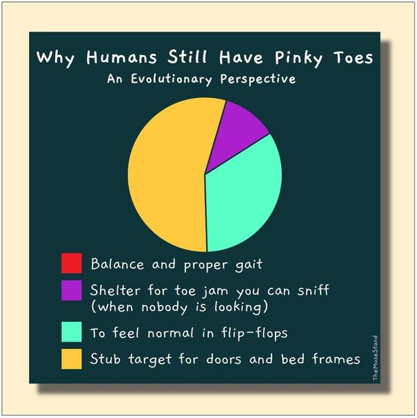 Funny pie chart cartoon comics joke about pinky toes, available online free